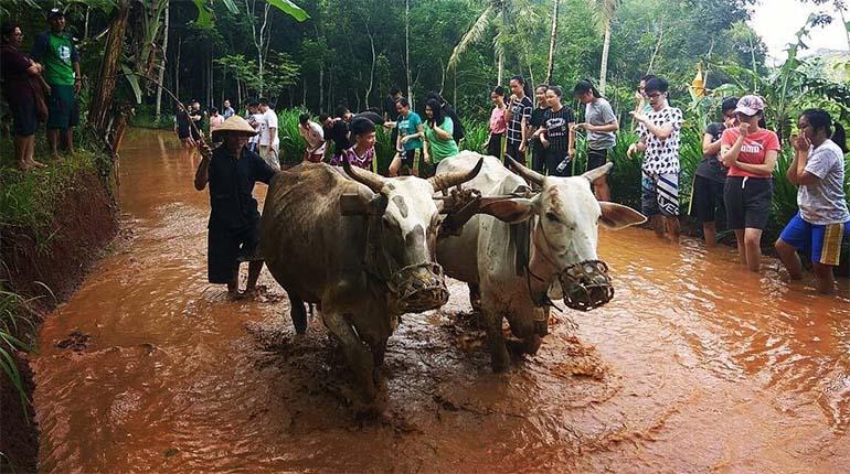 Desa Wisata Nglanggeran, Pesona Wisata alam dengan konsep ekowisata