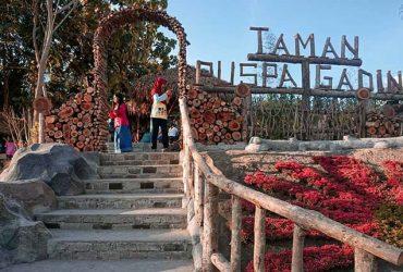 Taman Puspa Gading Tegaldowo, Taman Dengan Wahana Edukasi Anak di Bantul